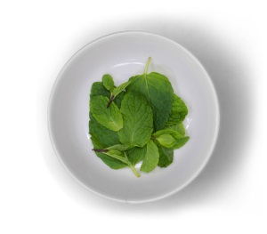 Healthy Food Near Me 108-Fresh-Mint