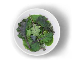 Restaurant Food Near Me 32-Baby-Kale